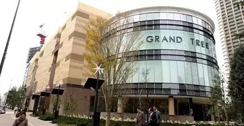 格林木购物中心远在东京神奈川县武藏小杉地区